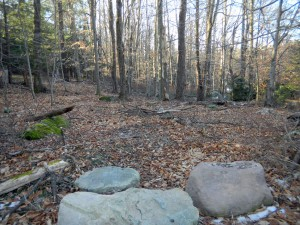 75 X 150 Building Lot #1. Lake Rights! Water...