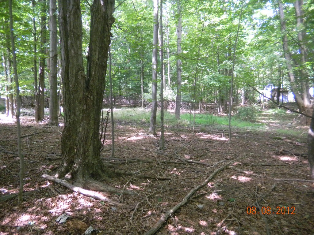 1/2 Acre Corner Country  Lot in Village of...
