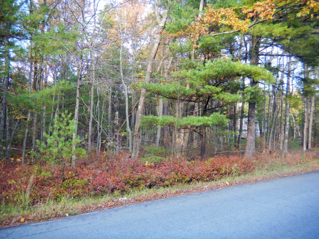 .92 Acres  Building Lot, Glen Spey NY - RVs...
