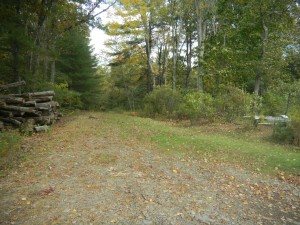 Land for sale upstate NY