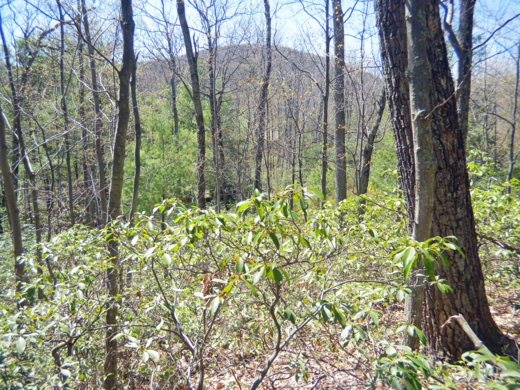Re-Listed!!! Private 2.2 Acres in Kerhonkson. Walk to Catskill Park! Mt. views! Only $13,900