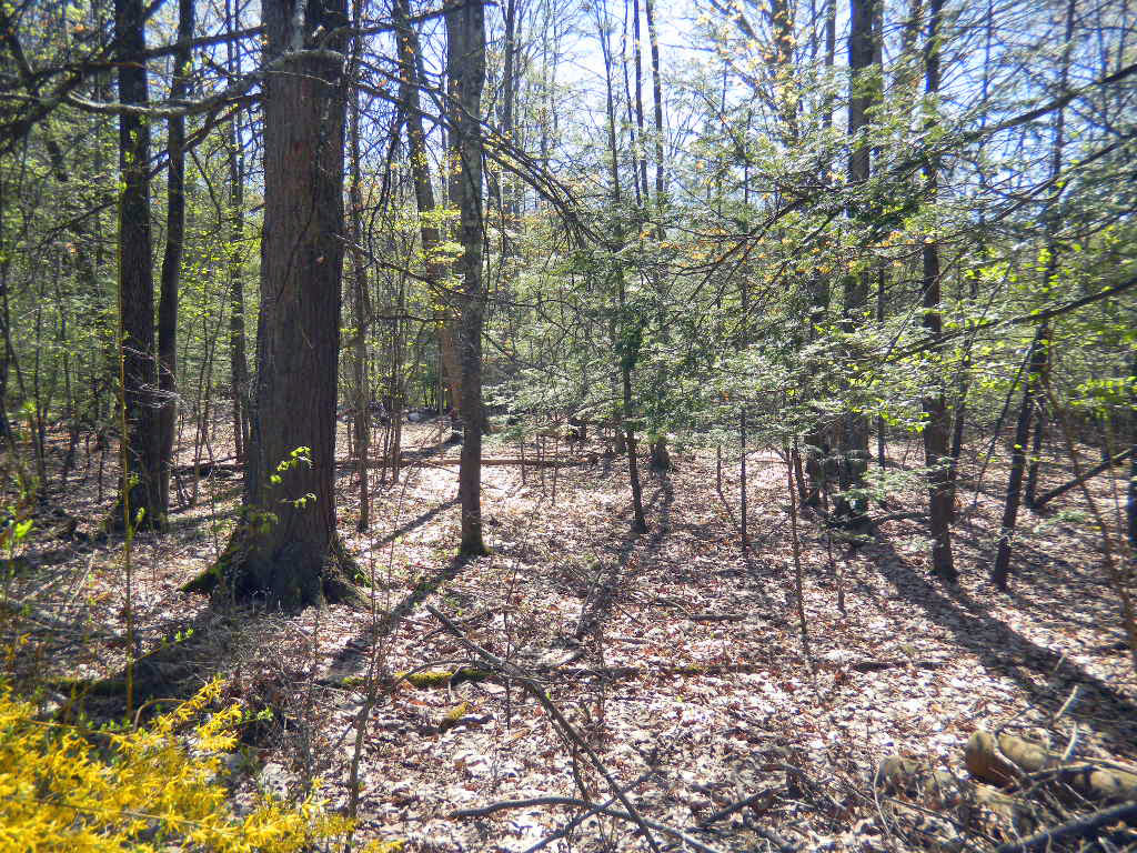 Kerhonkson Property - .9 Acres - Well & Septic!...