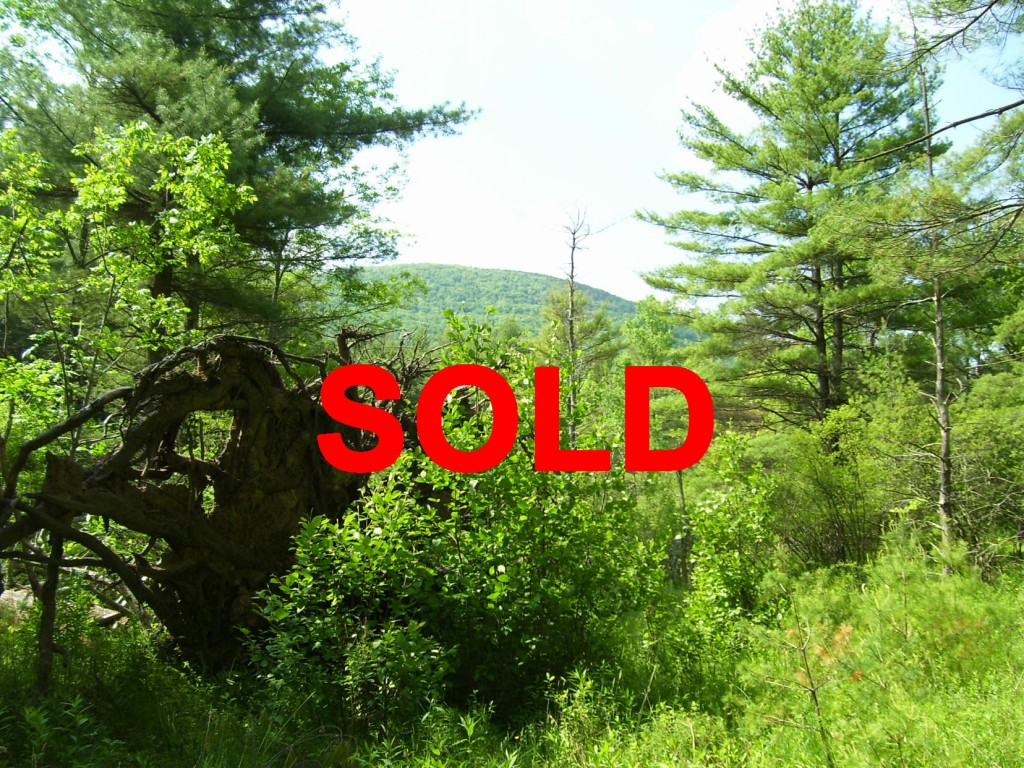 14+ Acres in Woodstock NY – Mt. Views! Hunting Cabin! Yr round stream! Reduced to only  $89K