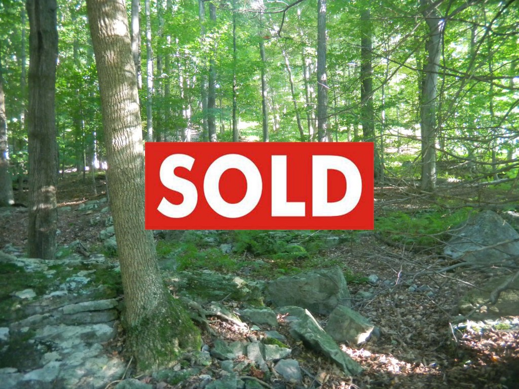 7 Country Acres – Pocono Mts. – Only 95 miles NYC – Sub-dividable! Only $19,900