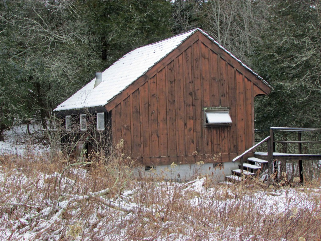 For sale – Seasonal Cabin on 3 Private Acres – Deck overlooking stream – Mt views – Only $35,900!! Owner financing!
