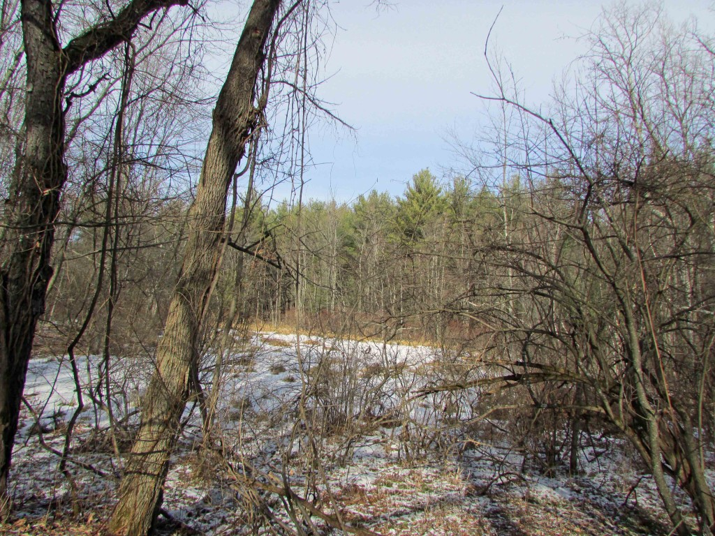 New 3 Acre Country Building Lot - Mt Views...