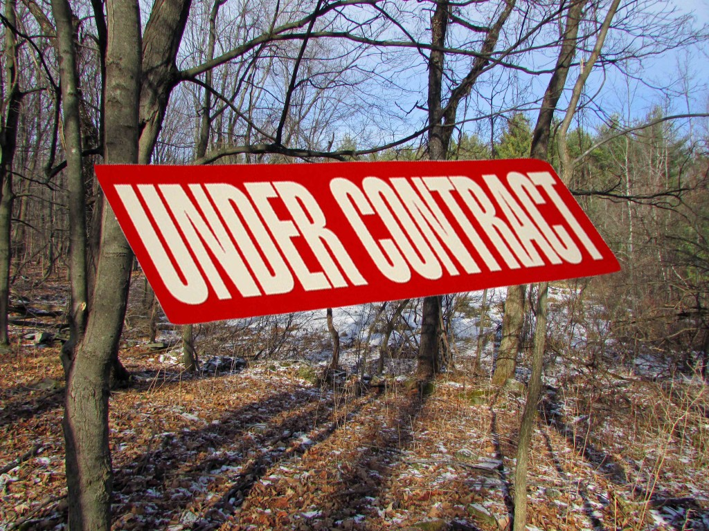 New 3 Acre Country Building Lot – Mt Views – 2 1/2 hrs to  NYC – New Baltimore, Greene County NY- Only $9,900!!