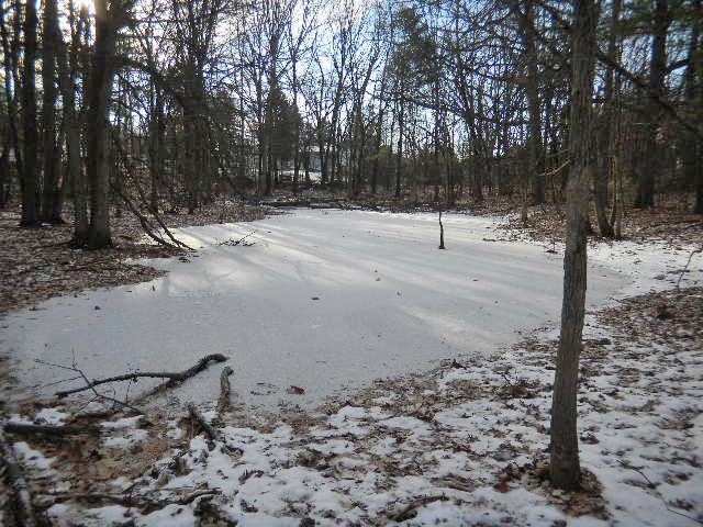 2.95 acres, country setting w/private pond....