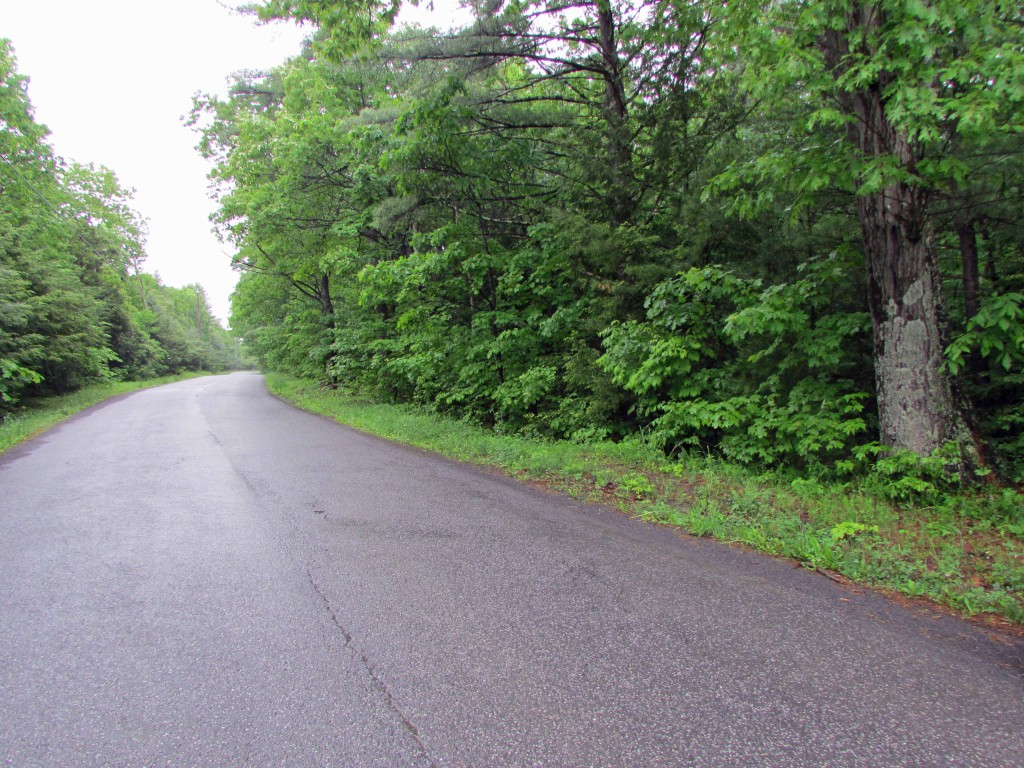 "For Sale – 4+ ""Sweet Country"" Acres – Saugerties NY – 5 Adjoining Parcels, 1 great Price. Only $47,900"