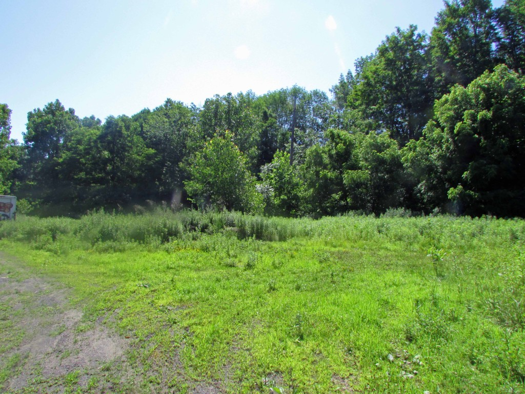 For Sale – 2 Acre Parcel Ideal for Country Retreat. Walk to Roundout Creek & Old Rail Trail. RVs OK! Only $14,900!!!