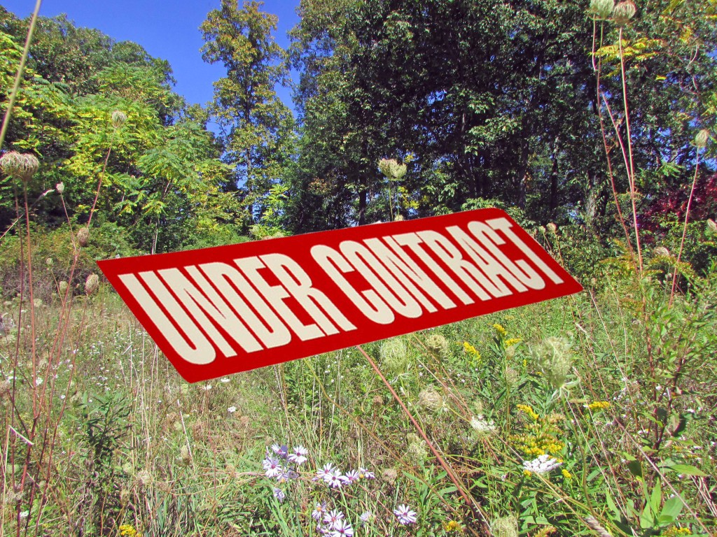 5+ Acre Refuge in the Woods – Catskill/Athens. Part Wooded/Part Cleared. RVs & Tiny Houses OK!. Only $17,900!
