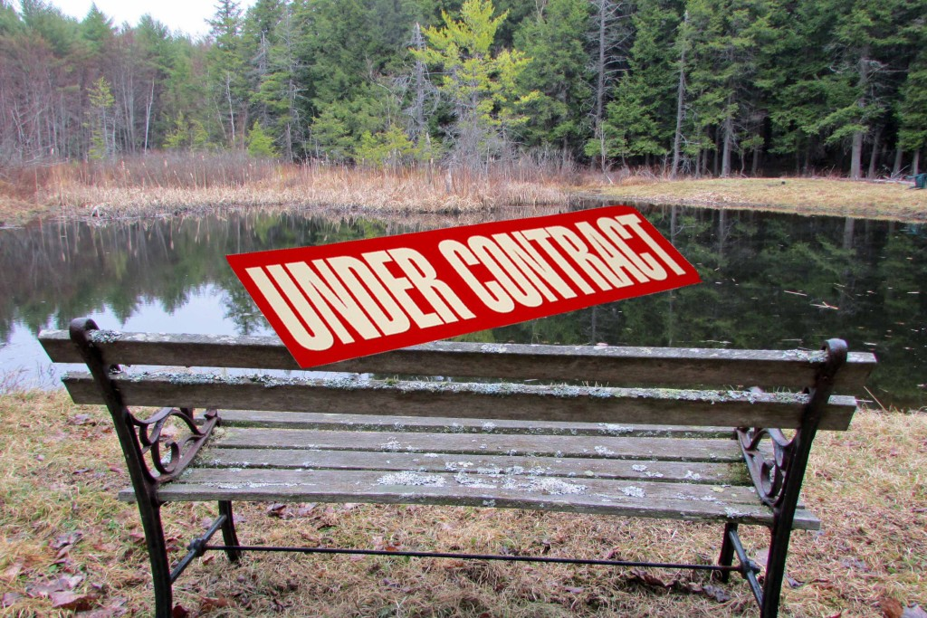 5 Secluded Acres on Golden Pond in Park-Like Setting – Conesville/Gilboa NY – Under 3 hrs to NYC! RVs OK! Only $12,900!