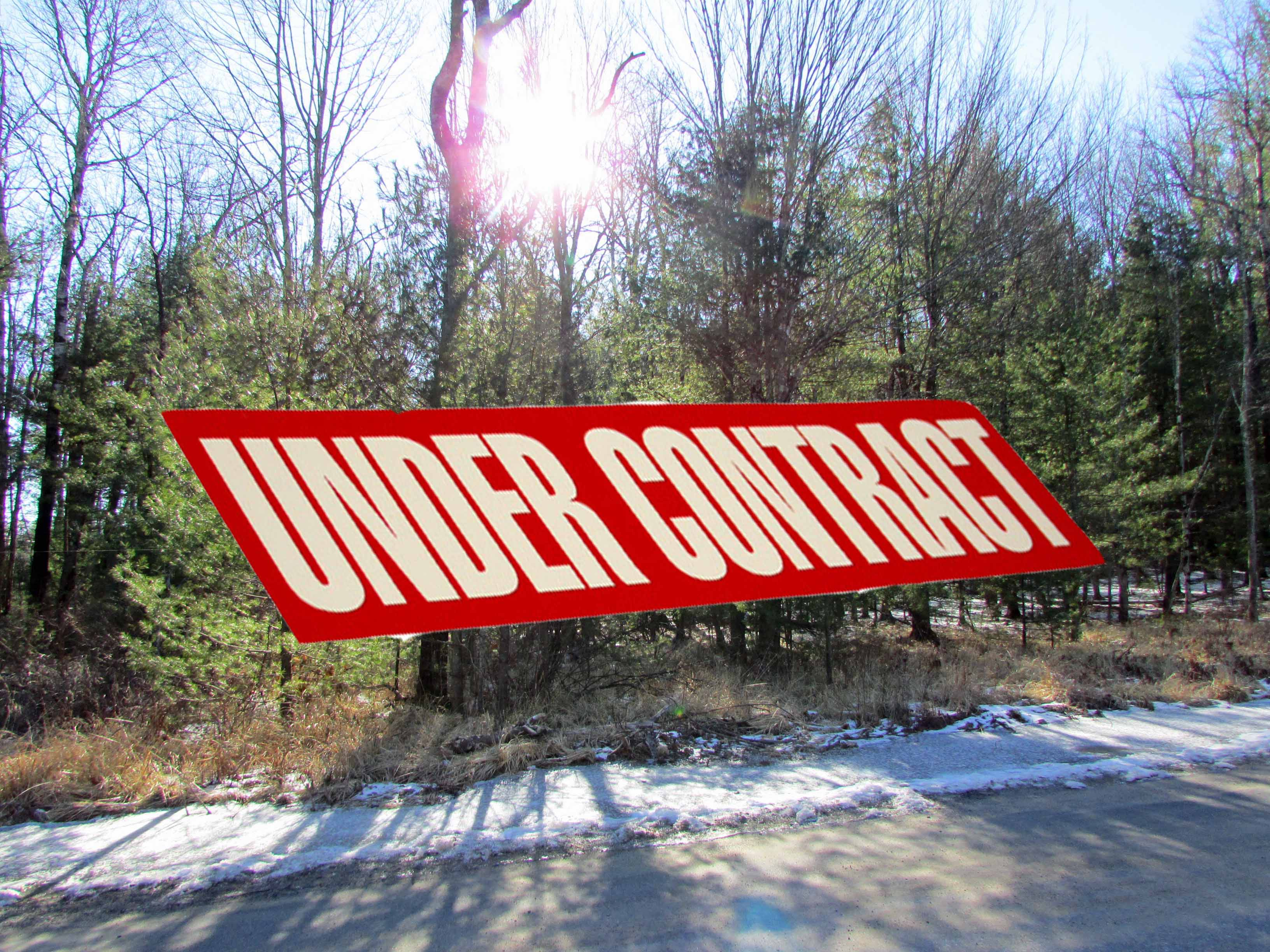 IMG_6401 under contract