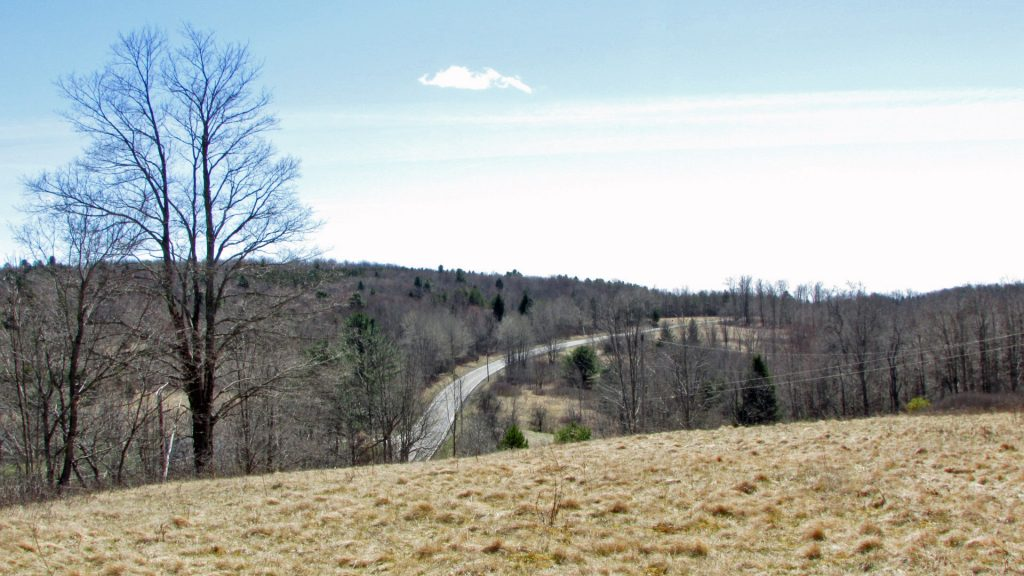 PRICE REDUCED – $21k! – FOR SALE   6.7 ROLLING ACRES, JEFFERSON, NY – Well & Electric. Half cleared/half wooded. Views. Walk to State Land. 3 hrs/NYC.