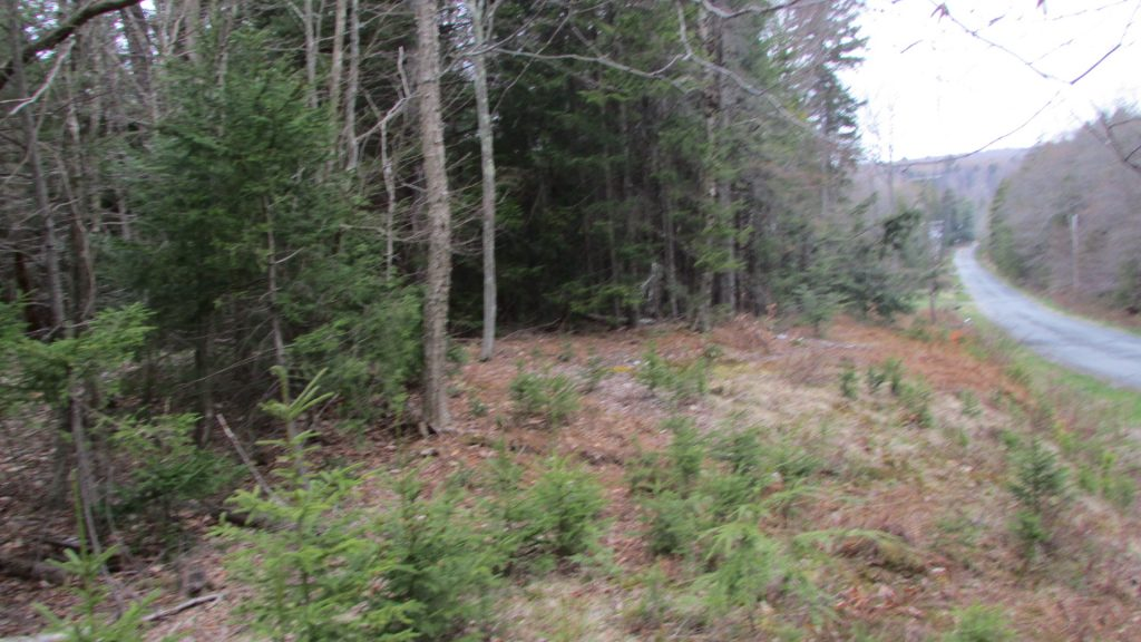FOR SALE  2.3 Level, Wooded  Country Acres  Town of Liberty, NY  Sullivan County  Peaceful Country Setting  Well maintained road. Mins to Monticello Raceway, Bethel Woods,  Willowemoc Wild Forest & Neversink Reservoir.  2 hrs/NYC!! Owner financing!!! Only $13,900!!
