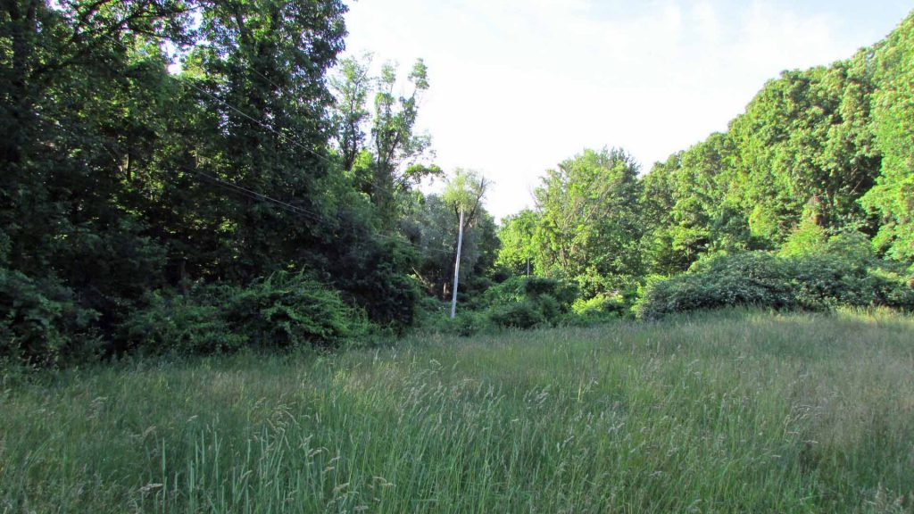 ALERT – Under 90 mins/NYC!! – FOR SALE – 4.4 Private Country Acres, Desirable Marlboro, NY – Driveway & Electric In!! Mins to Hudson & Stewart Airport. Only $29,900! (fmv $70k)