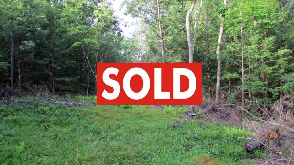 For Sale – 5 Pristine Acres Kerhonkson NY – Electric – Driveway – Septic – Mins to Minnewaska State Park – Unique Eco-System – Only $24,900!!