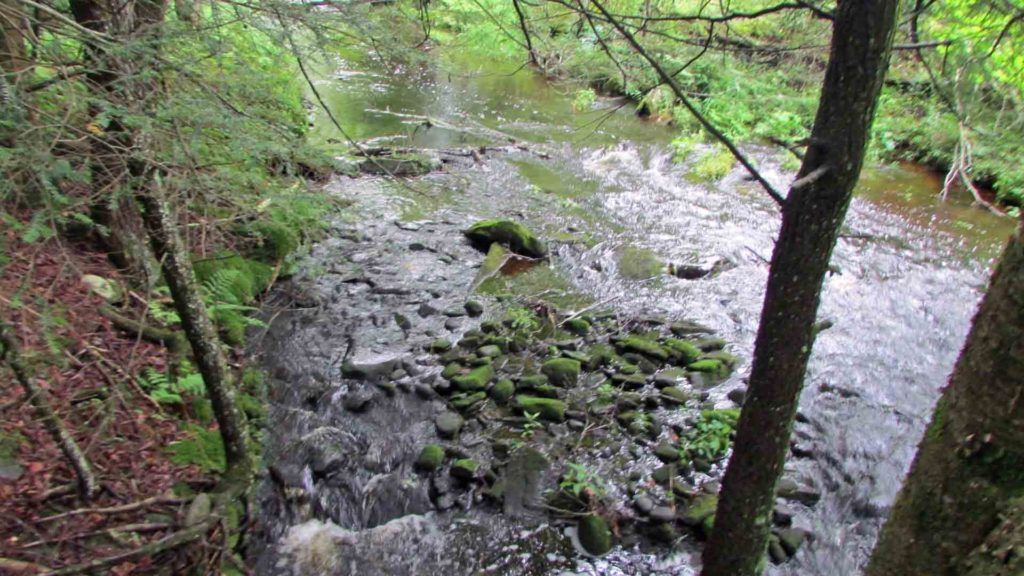 FOR SALE  3.45 EARTHY ACRES  BETHEL / SWAN LAKE,NY  Crystal Clear Cascading  Creek.  Varying terrain.  Many possible building  sites.  RVs OK!!!  Mins/Rt 17,  Kauneonga Lake,  Sullivan Airport, Bethel Woods,  Monticello Racetrack  & the future  Montreign Resort Casino.  Only $13,900!