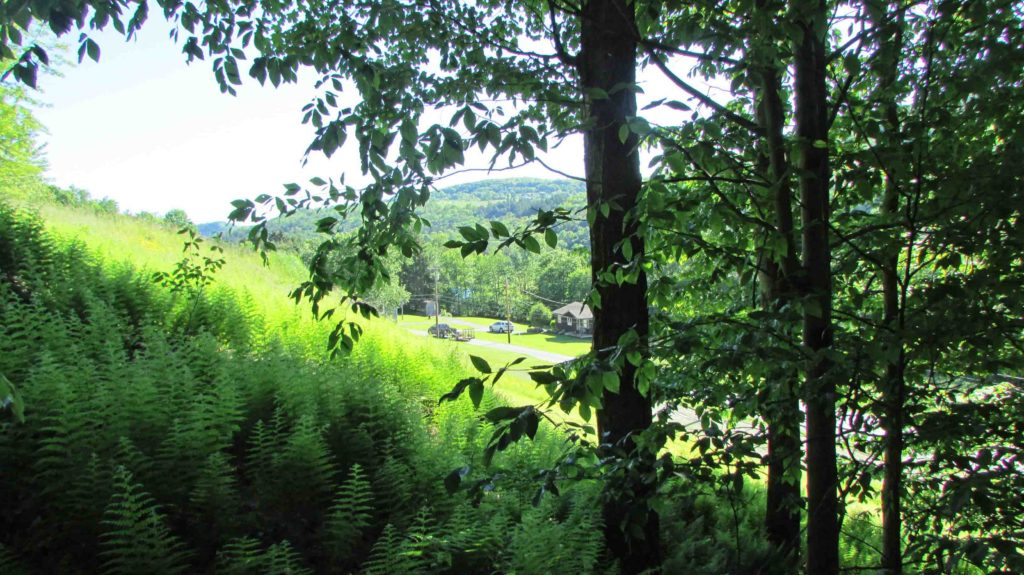 FOR SALE  2.6 SPRAWLING ACRES  North Branch/Callicoon, Sullivan County, NY – Mountain views, Unique rock croppings, Maintained road, Electric – 2 hrs/NYC – Mins/Delaware River –   Reduced $13,900!!