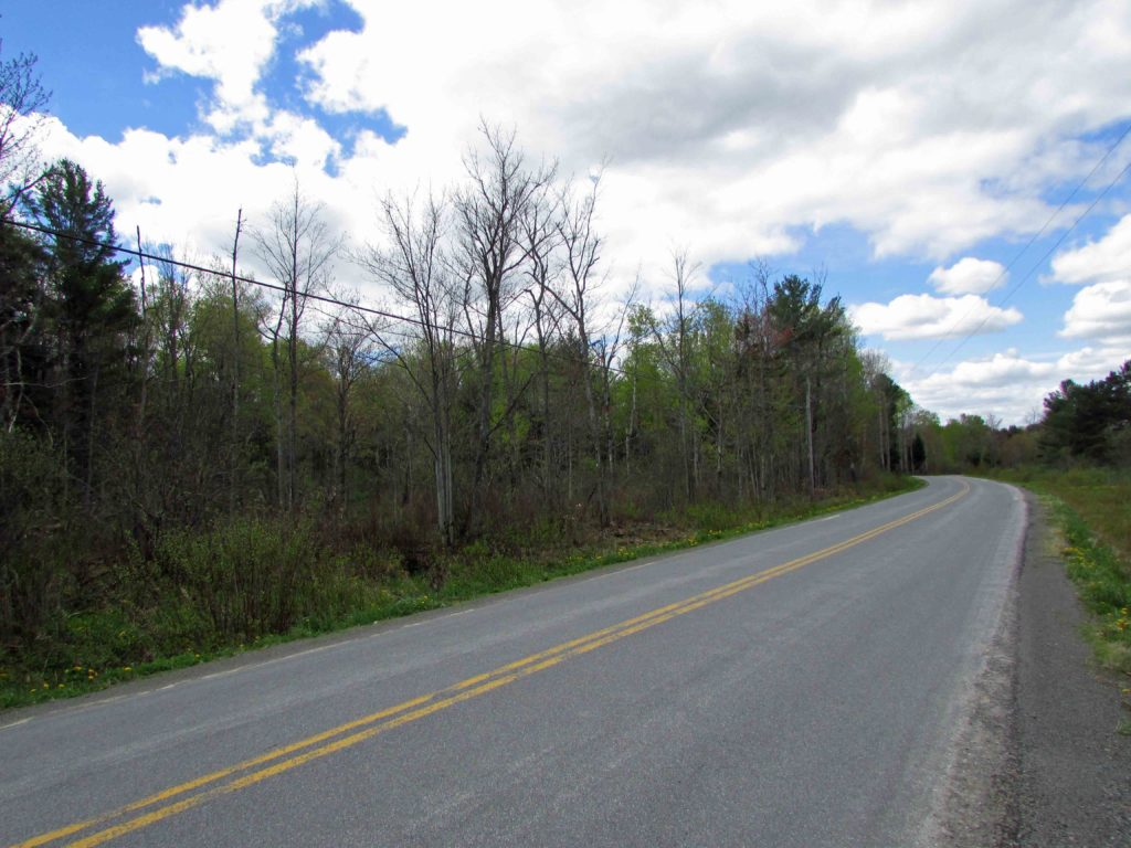 6.13 Country Acres  Jefferson, NY, 3hrs/NYC, 1+hr/Albany. Mins to state land. Only $13,500!