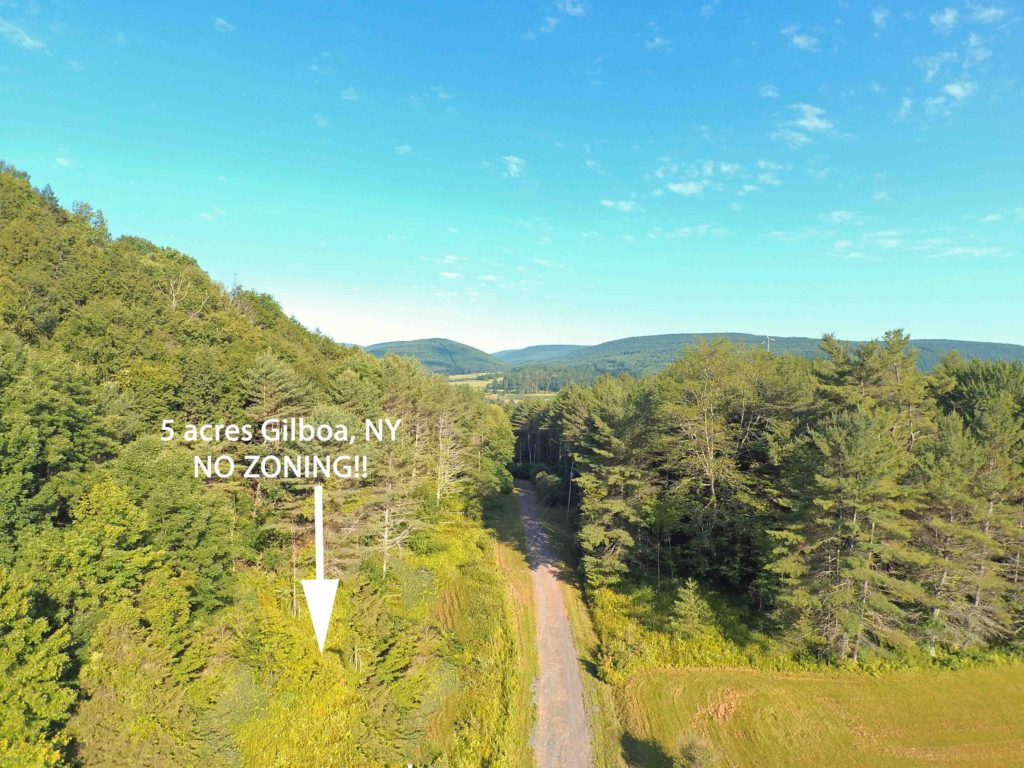"""LIVE FREE""  in  GILBOA NY – 5 Sweet Acres w/Mt Views – NO ZONING LAWS!!!! 3 hrs/NYC – Mins to State Land – Only $15,900!"