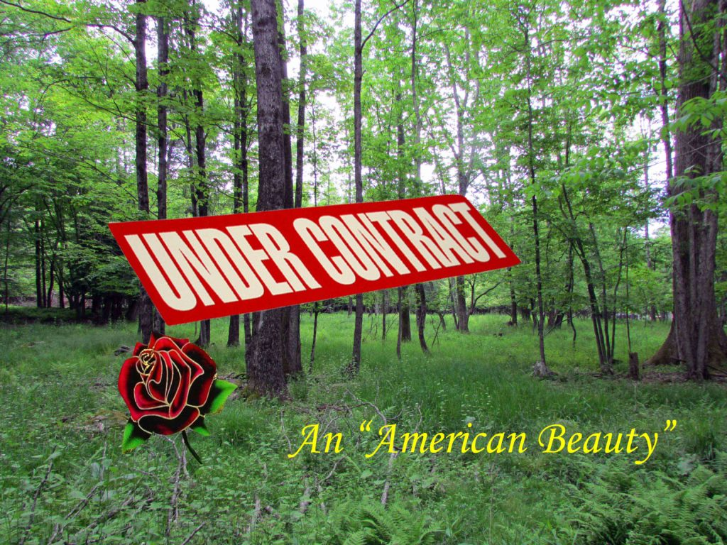 "An ""American Beauty"" – 4.6 Acre Country Building Lot, Bethel NY, Quaint Stream – Reduced $17,900!!"