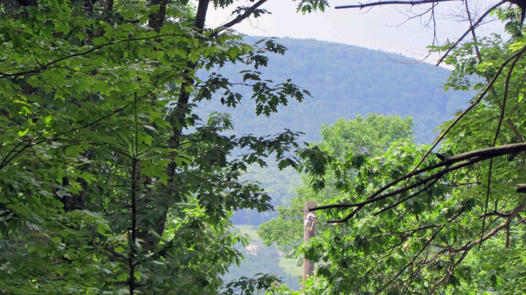 """Nature's Gateway"" 1 Pristine Acre Adjoining State Land, Neversink, NY. I'LL PAY YOUR CLOSING COSTS Driveway in! Electric! Distant Mt views!  Only $9,900!"