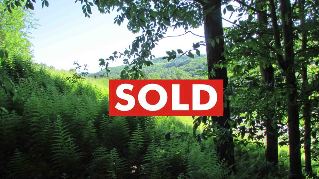 NO MONEY DOWN!!! 2.6 SPRAWLING Acres  Callicoon,...