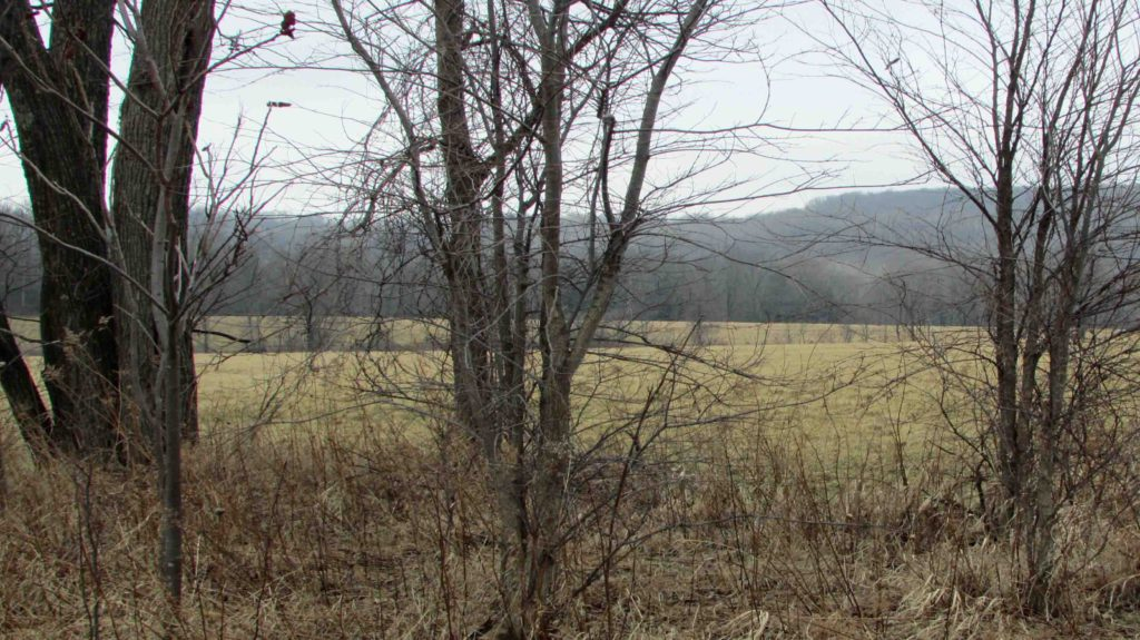 """Diamond in the Rough"" – 2.13 Level Country Acres – Commercial/Residential – Electric – Sweeping Mt Views – Carlisle/Cobleskill NY – Only $13,500!!"