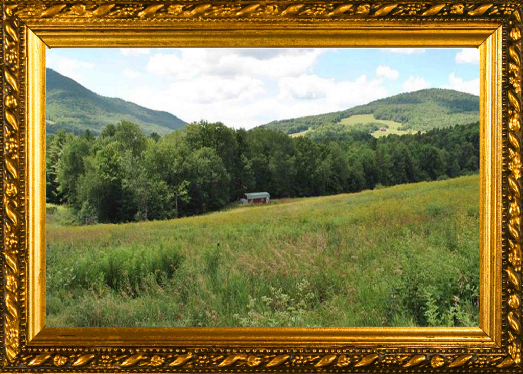 """The Masterpiece""  FOR SALE  2 Adjoining Lots  Totaling 11+ Acres  Gilboa, NY – Lake Rights – u/g Utilities – Million Dollar Views! – 575 sf shed – Only $59,900!"