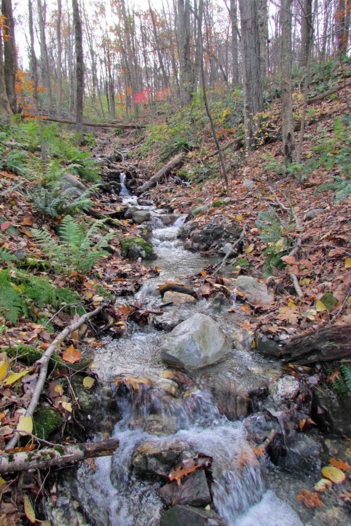 """COLD STREAM LANDING""   1.73 acres Dover Plains, NY, Dutchess – Surveyed – Perc'd – BOH Approved – Stream & Mt views – 90 mins/NYC. Reduced $21,900!!"