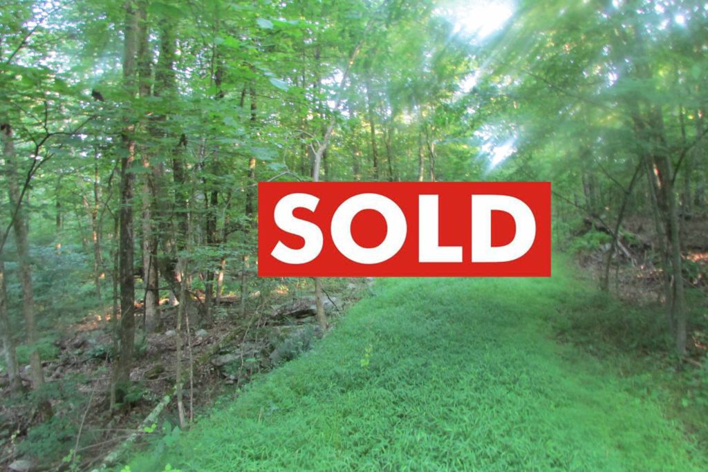 """""""The LANDING"""" – 10 Bucolic Acres, Plattekill NY – Level, wooded, electric, driveway – Great location. Mins/New Paltz! Under 2 hrs/NYC! Only $43,900!"""