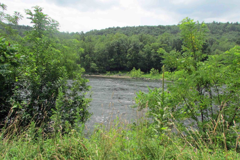 """The WET & The WILD"" 1.6 Rugged Acres in Pond Eddy NY – Mt views – Walk to Delaware River – 2 hrs/NYC – Only $13,900!"