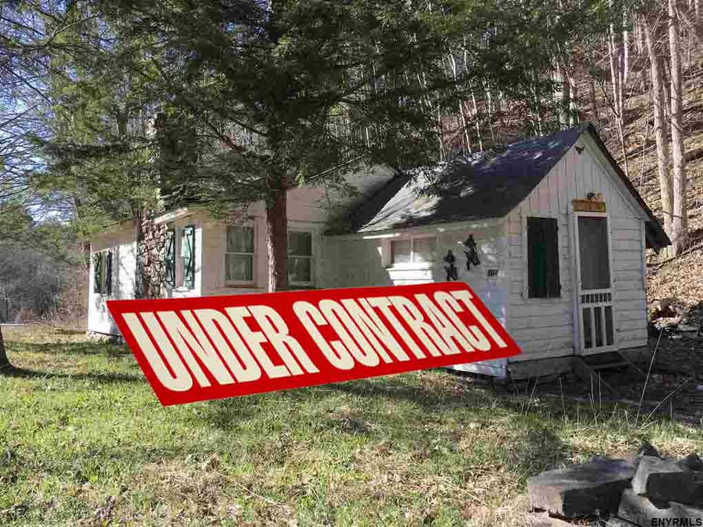 """""""The Old Homestead"""" – 10.7 Wilderness Acres – Middleburgh, NY, Schoharie County. Adjoining 1163 acre  state land – Cabin w/electric & fireplace –  Waterfront  – Abandoned 1-Room Schoolhouse – NO TOWN ZONING!!!!! Only $39,900"""