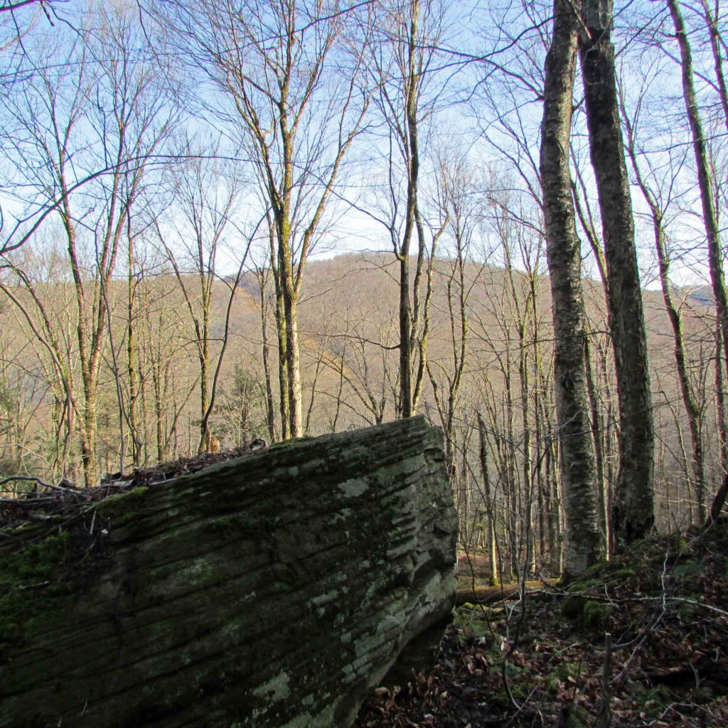 """""""The COUNTY LINE"""" – Where  Delaware &  Sullivan Counties  meet – Hancock, NY – 7.27 Secluded Acres – Mt views – 2+ hrs/NYC."""