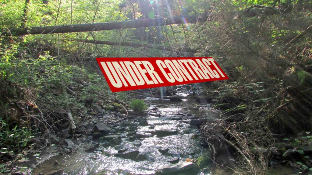"""FLAT CREEK"" LANDING – FOR SALE 10 TOTALLY SECLUDED  ACRES MIDDLEBURGH, NY Rambling Creek. Private road access. Electric in area. RVs permitted!!! Only $23,900!"