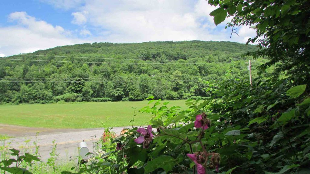 """The MAGIC"" of Middleburgh – 23.7 Magical Acres Schoharie County – Adjoining State Land – Mt views – No zoning restrictions – RVs OK! – 3 hrs/NYC –  Won't last at $29,900!"