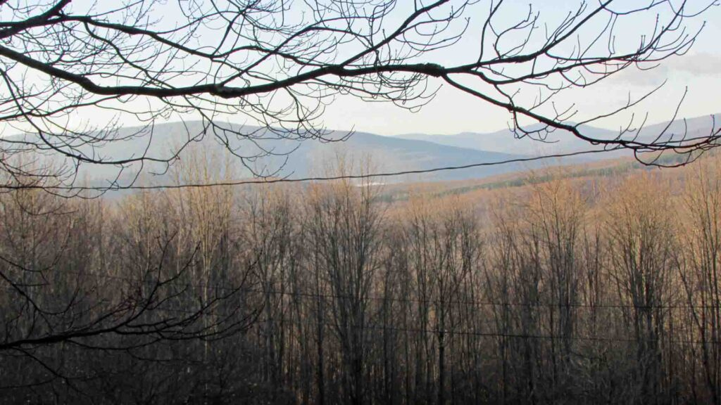 """Bad Betty"" – 3.5 Rustic Acres Betty Mt Rd, Halcott NY – No town rd – No electric – No W&S – The most beautiful property you hate to love!  Only $17.9k!"