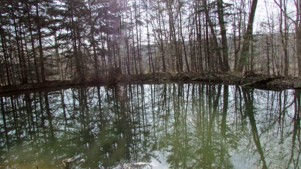 """REFLECTIONS"" 5+ Scenic Acres, Summit NY – Spring fed Pond – Mt Views – Woods & Fields – RVs OK – Only $22,900!!"