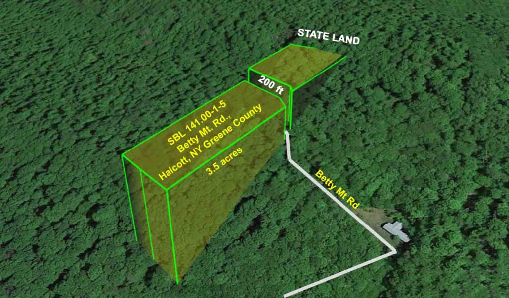"""""""Bad Betty"""" – 3.5 Rustic Acres Betty Mt Rd, Halcott NY – No town rd – No electric – No W&S – The most beautiful property you hate to love!  Adjoins state land! Only $17.9k!"""