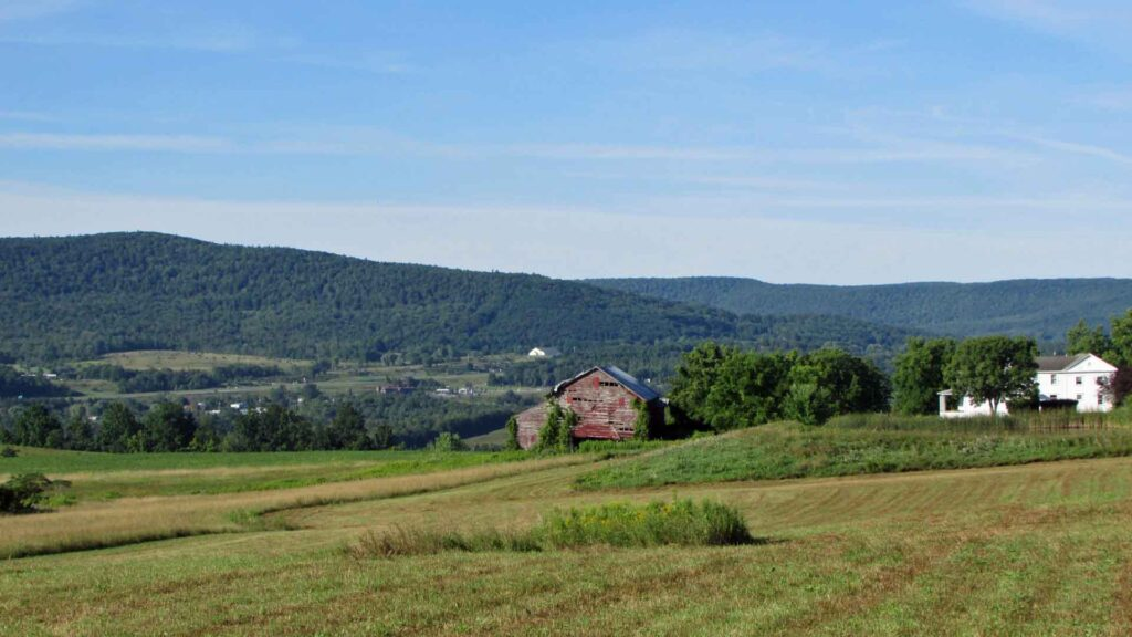 """""""AMERICAN BEAUTY""""  2 Beautiful Acres in Howes Cave, NY Schoharie County –  Mt views – Level/Clear – Drilled Well – 45 mins Albany – 3 hrs NYC! – Walk to Howes Cavern  Only $15,900!"""